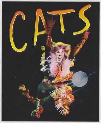 s-t-Cats.jpg