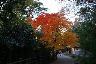 s200811 Sendai072