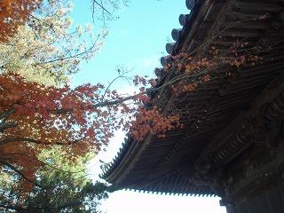s200811 Sendai014