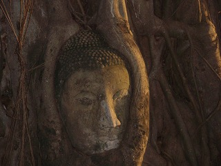 s2009Oct Thailand3-068