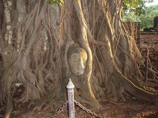 s2009Oct Thailand3-067