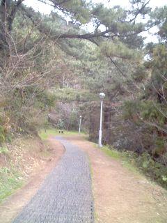 20080208-62.jpg