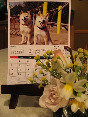 姉弟のツーショットカレンダー♪