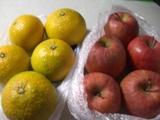 12月15日リンゴ