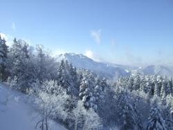 2月8日樹氷2