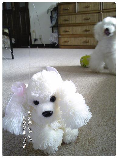 Image140a.jpg