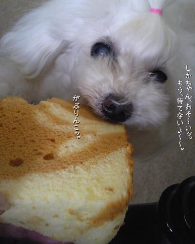 Image328a.jpg