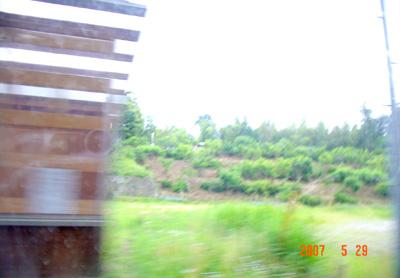 070529_03_mizukumi_04.jpg