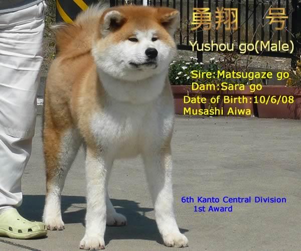 yushou091.jpg