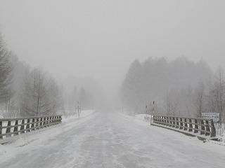 3月8日、雪雪雪。