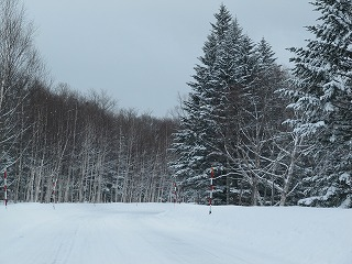 また・・・冬