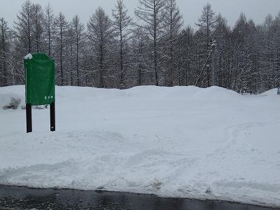 昨日の雪で。。。