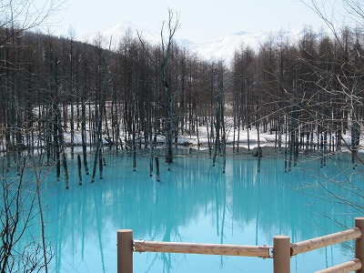 青い池 4.27