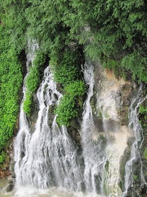 白ひげの滝 雨の日。