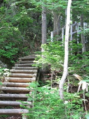 急な階段から
