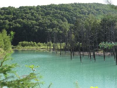 青い池!?