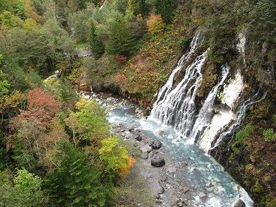 今日の白ひげの滝。