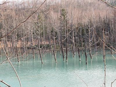 11.14 青い池