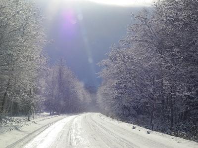 白い街道~