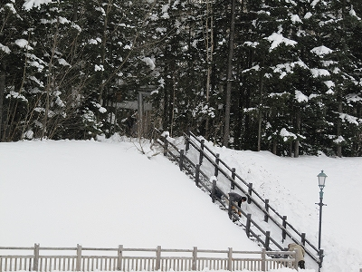 階段の雪も、、、