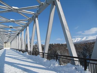 橋の上から♪