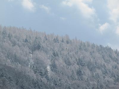 s-かる~く雪化粧