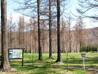 s-ビルケの森パークゴルフ場