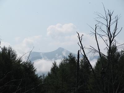 s-青い池から見える~山。
