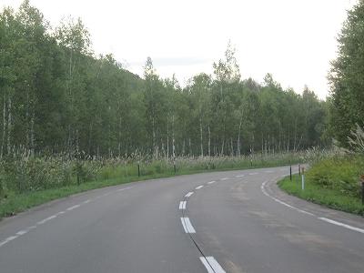 s-白樺街道