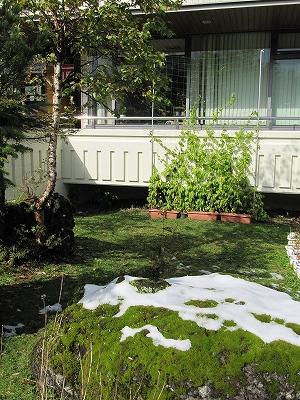 s-少し雪が残って。
