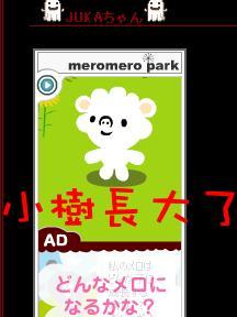 20060427_a.jpg