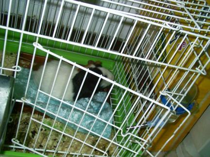 20061025_1-.jpg
