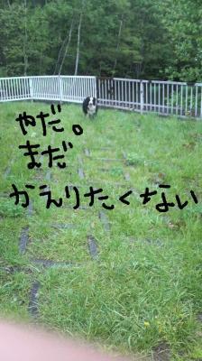 2009052310580000.jpg