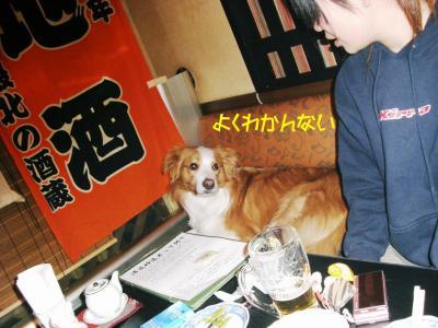 CIMG3860_sh01.jpg
