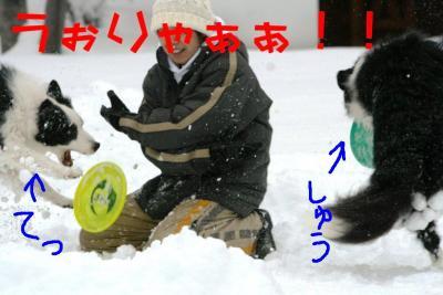 IMG_8148_sh01.jpg