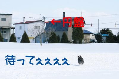 IMG_8669_sh01.jpg