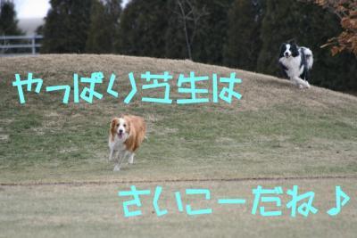 IMG_9105_sh01.jpg