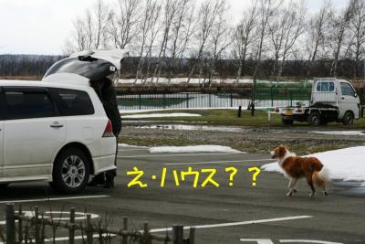 IMG_9137_sh01.jpg