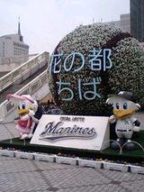 bc1a0361.jpg