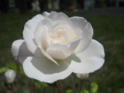 20090624-2