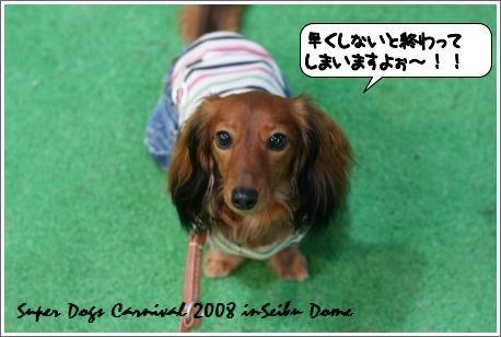 20080923_224154.jpg