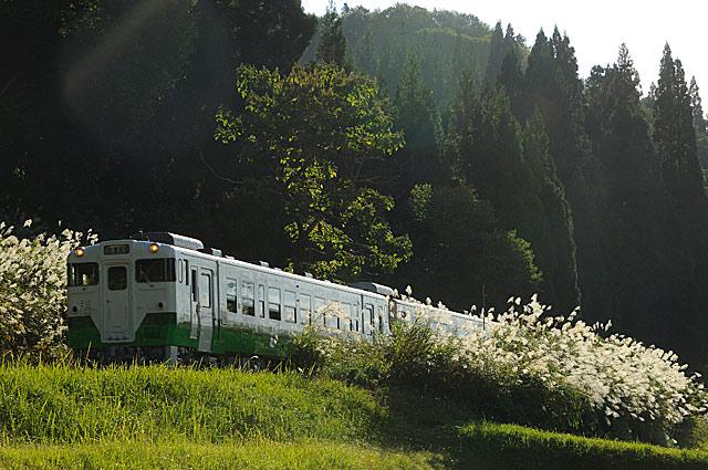 kosugawasusuki
