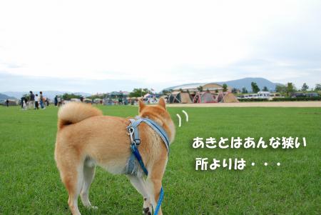 NDA丸亀大会18