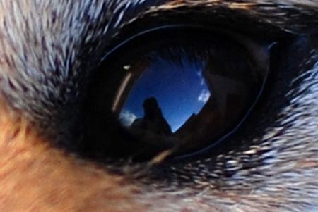 瞳の奥には