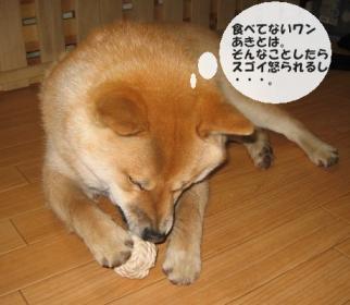 食べてなーい!