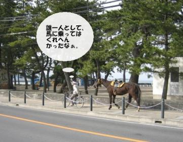 馬とおじさん3