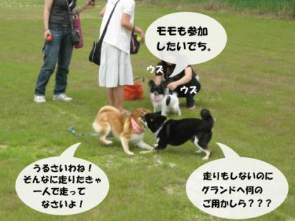 あずVS二コ再び!