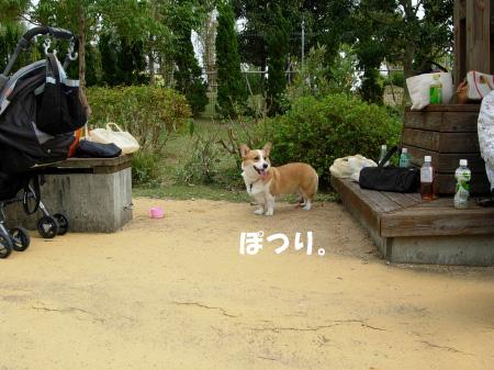 一犬ぽっち