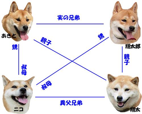 相関図(ご親戚編)