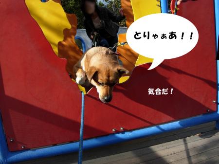 ナナちゃんジャンプ!